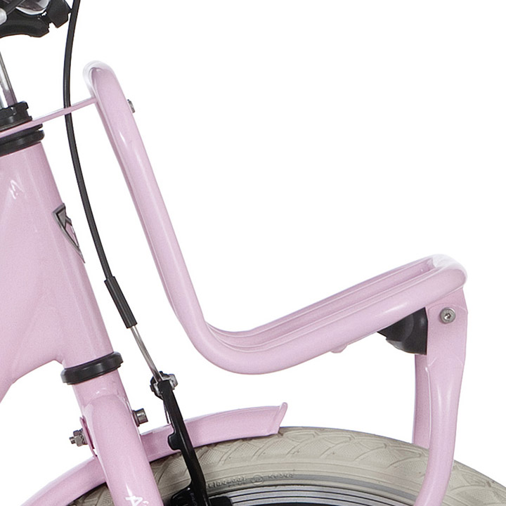 Alpina Transportdrager  Clubb 20 Inch Roze