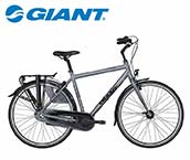 Giant Chill Herenfiets