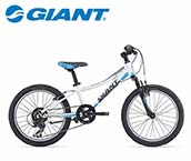 Giant Kinderfiets 20 Inch