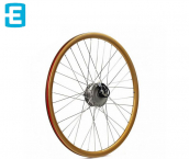 E-Motion E-Bike Wheel & Parts