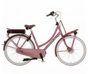 Mother's E-Bike