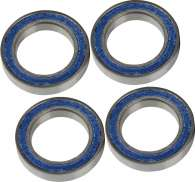 Campagnolo Bearing Set For. FH-BUUO15 / FH-BUUO15X1 (4)