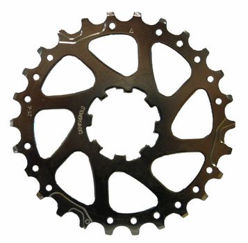 Campagnolo Tandkrans 25A tbv. 9 Speed 9S-251