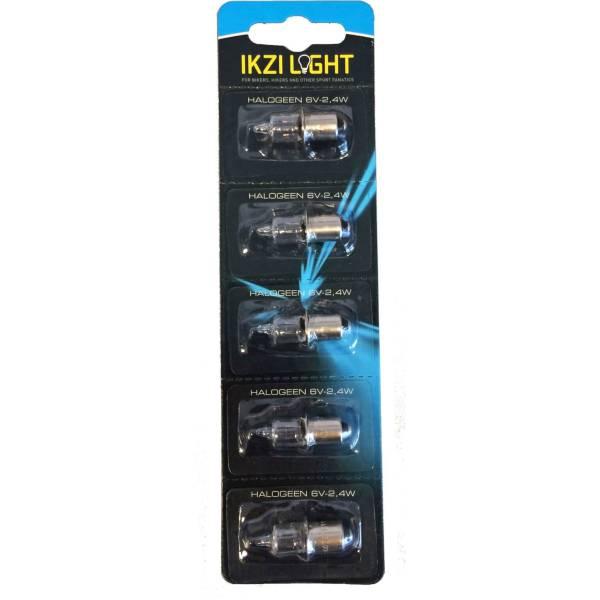 Ikzi Halogen Lampe 6v 2 4w P13 5s Silber 1 Kaufen Bei Hbs