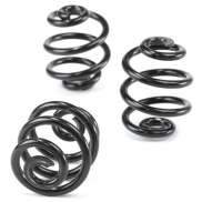 Lepper Coil Spring Set for Hygia CX/Classic - Black